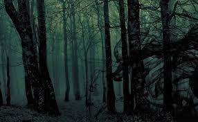 100 D D Forest Encounter Ideas Nerds On Earth