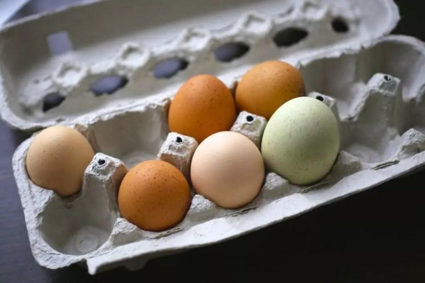 A carton of multicolored eggs
