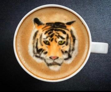 Tigre- credito instagram @baristabrian
