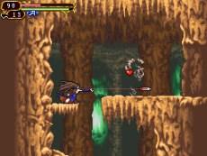 Castlevania Order of Ecclesia by Konami for Nintendo Wii