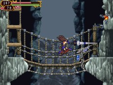 Castlevania Order of Ecclesia by Konami for Nintendo Wii
