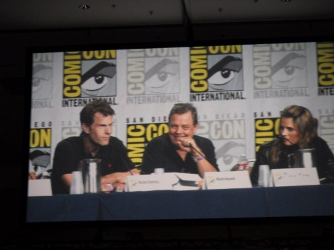 Kevin Conroy, the voice of Batman, Mark Hamill, the voice of Joker and Stana Katic shared the stage at the Batman: Arkham City panel.