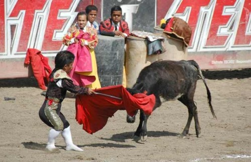 Midget bullfighting