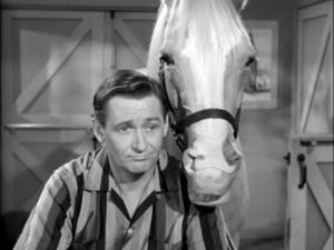 Alan Young on Mister Ed