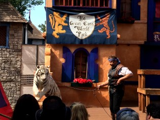 Colorado Renaissance Festival white tiger