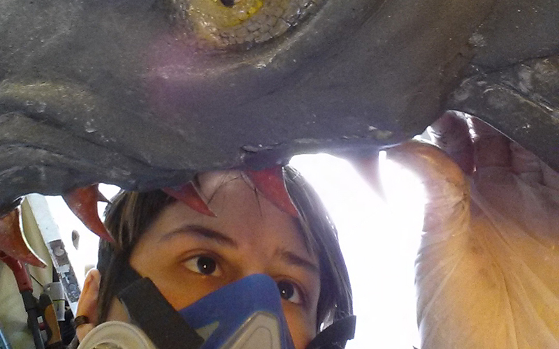 Tempe resident Lissa Carroll has spent three years and invested more than $1,000 on building a dragon head. (Photo courtesy of LIssa Carroll)