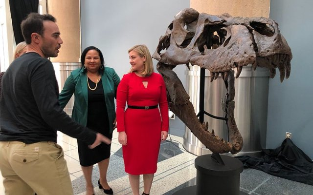 Fossil owner Aber Whitcomb, Arizona Science Center president and CEO Chevy Humphrey, center, and Phoenix Mayor Kate Gallego stand beside the skull of 66 million-year-old Victoria. (Photo by Sabine Galvis/Cronkite News