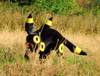 Replicate This Fashion: Pet Cosplay - Nerdy Curiosities