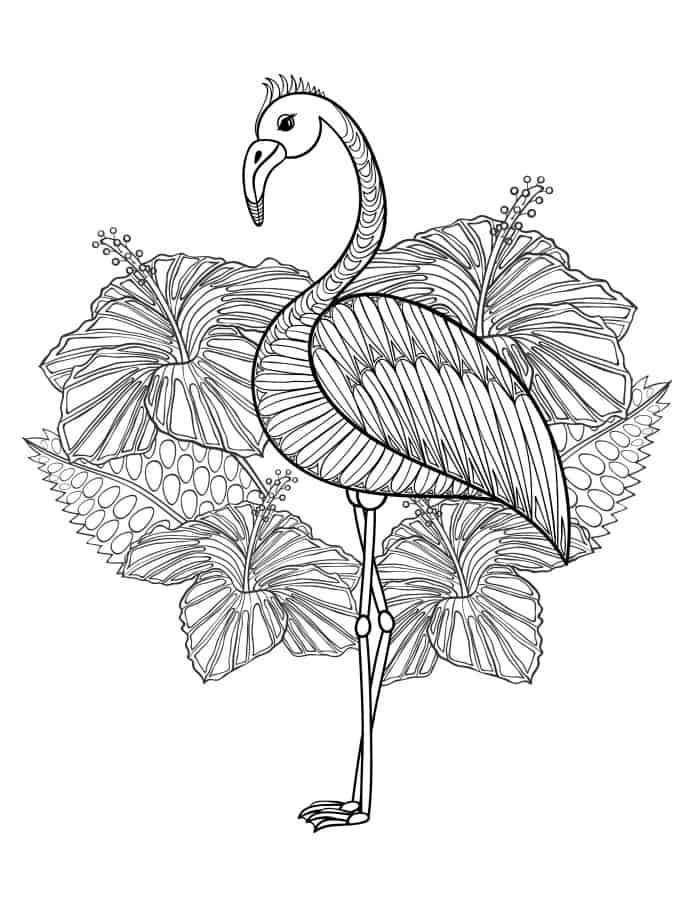 21 Flamingo Coloring Pages Pictures