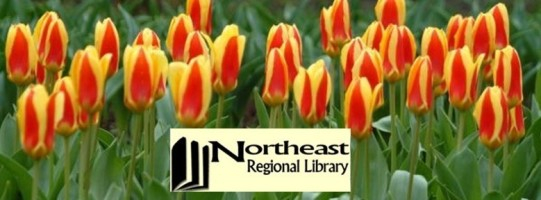Spring NERL logo