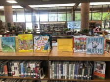 George E Allen Library LSTA Book Display