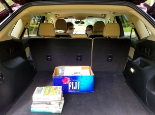 Snapshot Day 2020 with Trunk CurbSide Delivery at Rienzi!