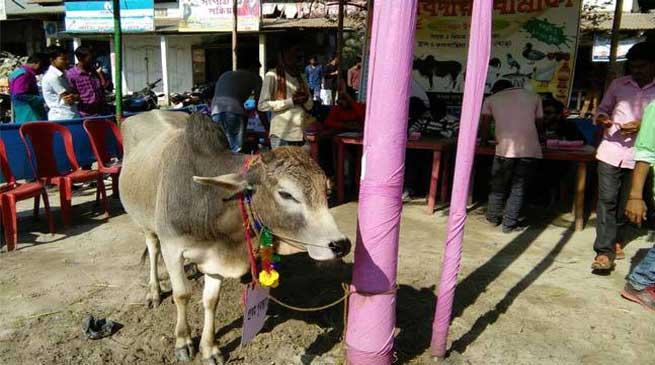 असम के ग्रामीणों ने अनोखे ढंग से मनाया नव वर्ष
