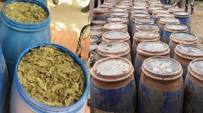 त्रिपुरा: ज़मीन में गड़ा 2330 KG गांजा बरामद, कीमत 5 करोड़