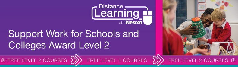 00762_Distance_Learning_Course_Sheet_Level_2_Support_Work_For_Schools_AW