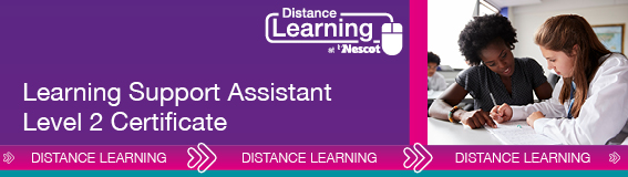 01842_Distance_Learning_567X160_Level_2_Learning_Support_AW (003)