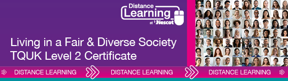 01842_Distance_Learning_567X160_Level_2_Fair_Diverse_Society_AW