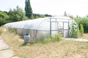 Film location nescot ewell epsom surrey college farm greenhouse