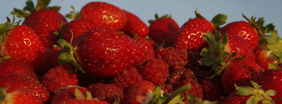Обща поръчка за сок и мармалад от ягоди