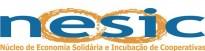 cropped-logo-nesic2.jpg