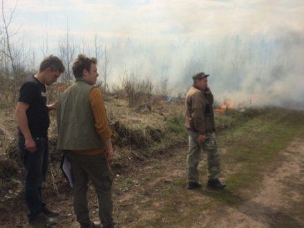 В Тольятти снова горел лес