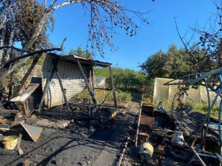 В Самарской области в пожаре погибли женщина и трое детей