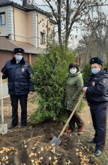 Полицейские и общественники Самарской области приняли участие в высадке саженцев хвойных деревьев