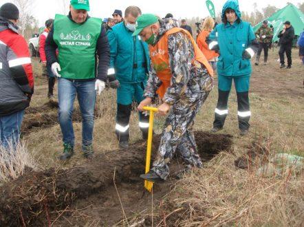 Самарский регион принял участие в международной акции «Сад памяти» – 2021