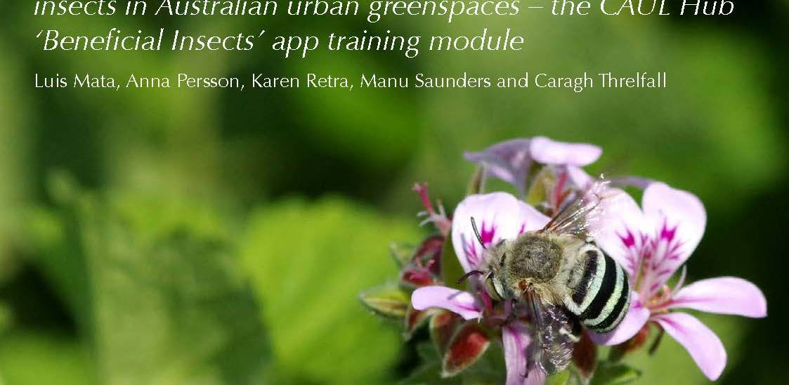 An identification guide to some of the most beneficial insects in Australian urban greenspaces – the CAUL Hub 'Beneficial Insects' app training module