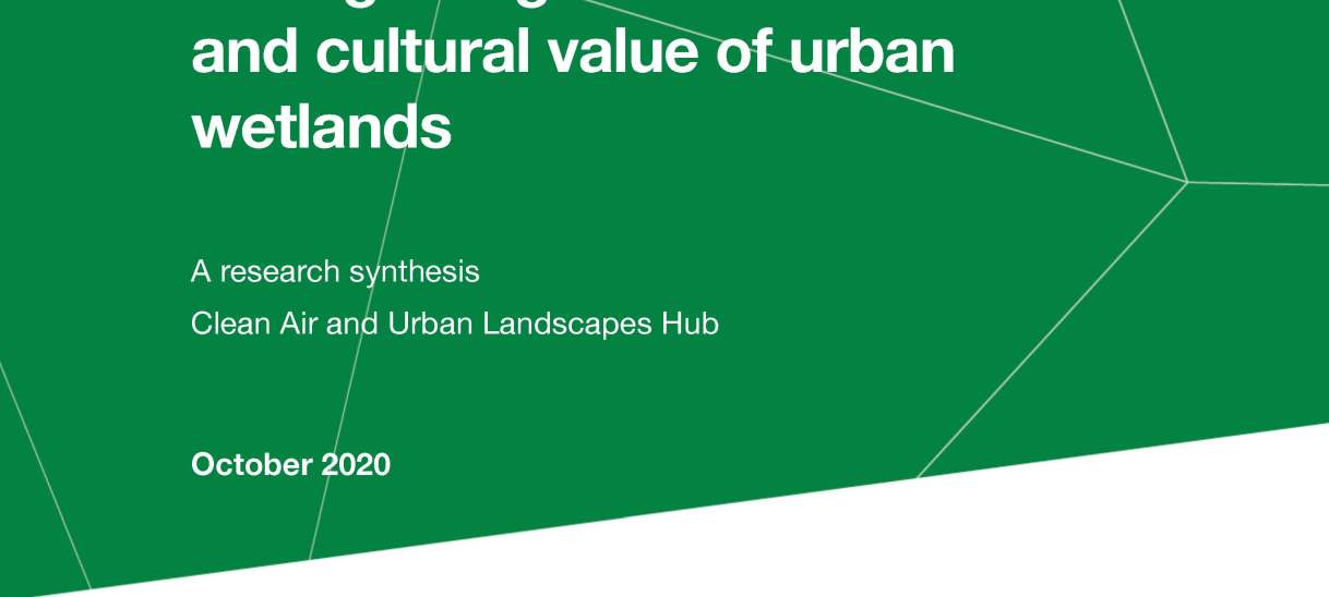 Recognising the conservation and cultural value of urban wetlands