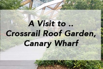 Crossrail Roof Garden, Canary Wharf, nessymon