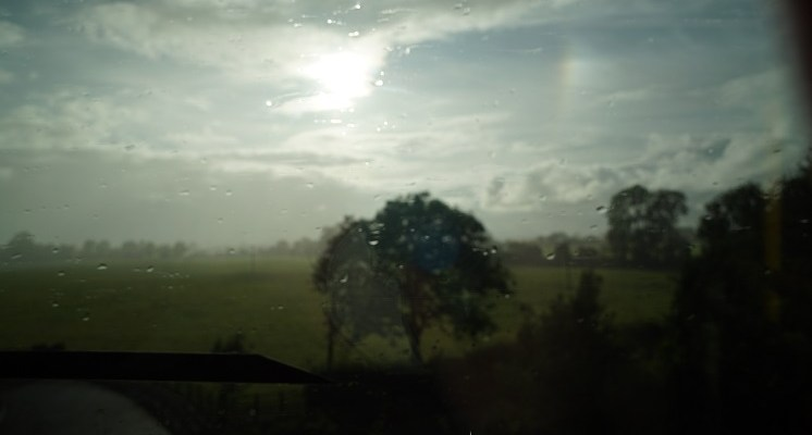 Irish countryside as seen from a moving bus with sunshine breaking through a cloudy sky and rain with a tree in the middle of the picture