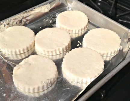 two ingredient biscuits 2