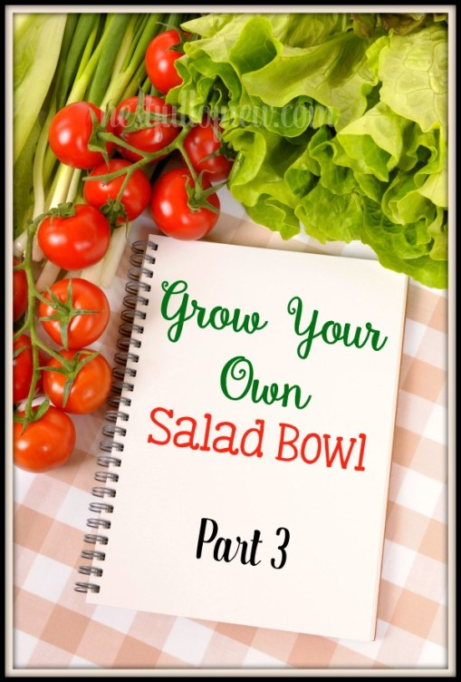 Grow Your Own Salad Bowl, Part 3 - Other things you can grow