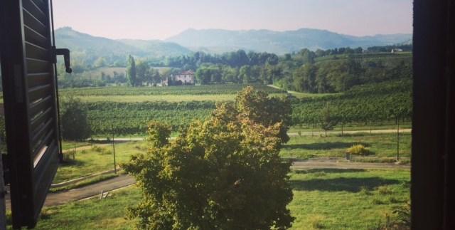 Terreno edificabile residenziale a Riolo Terme - Nest Immobiliare