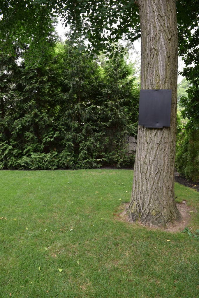 Black Chalk board hung on a tree for a game score board or menu