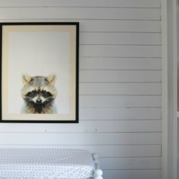Shiplap Wall DIY Tutorial- Inexpensive Accent Wall