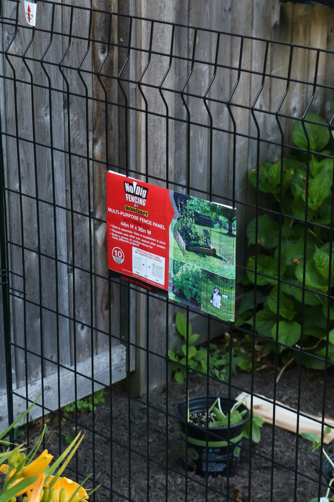 Our new Garden- Tips on Keeping Animals Out