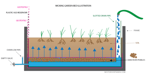 Wicking garden bed illustration