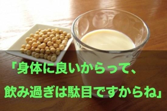 豆乳は善玉菌を増やす?1日辺りの適量は決まっています