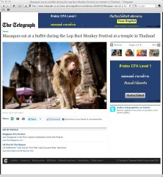 **TEARSHEET FROM THE TELEGRAPH WEBSITE** A monkey stands in front of the Phra Prang Sam Yod (The Three Crests Phra Prang) during the annual 'monkey buffet festival' in Lopburi province. The festival is held annually on the last Sunday of November to promote tourism.