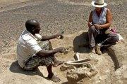 Le plus vieux massacre de l'humanité est africain,précisement du Kenya