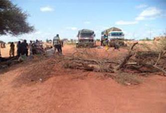 Burkina Faso : Ariel (Djibo): Attaque à main armée, deux morts