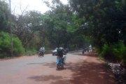 Ouagadougou : 2500 arbres contre du goudron