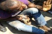 Un Porte-monnaie volé se transforme en serpent dans les mains du voleur