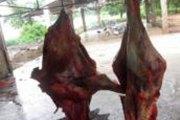 Fada: Course contre la montre pour retrouver de la viande intoxiquée