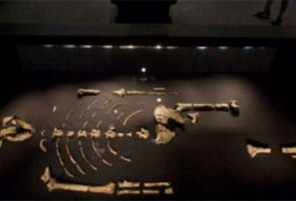 Ce jour-là : le 30 novembre 1974, le squelette de Lucy est découvert en Éthiopie