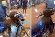 Des abeilles attaquent un voleur pour récupérer une moto volée