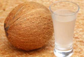 Les grandes vertus de l'eau de coco que vous ignoriez!