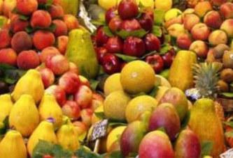 DIMINUTION DU TRAFIC FERROVIAIRE : Les exportateurs de fruits et légumes de Koudougou rejettent la mesure